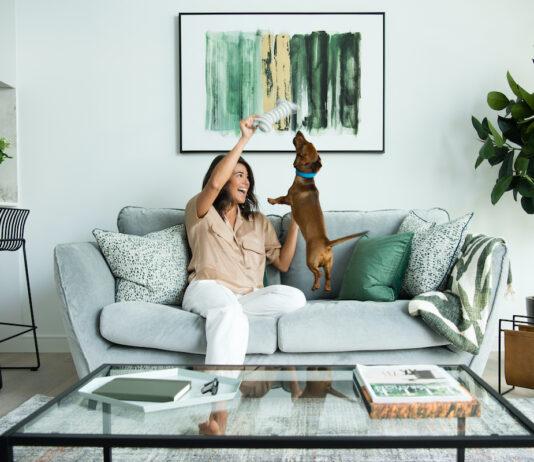 8 Water Street pet friendly apartment lifestyle - Vertus   BTR News